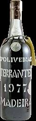D'Oliveira - Terrantez Madeira 1977